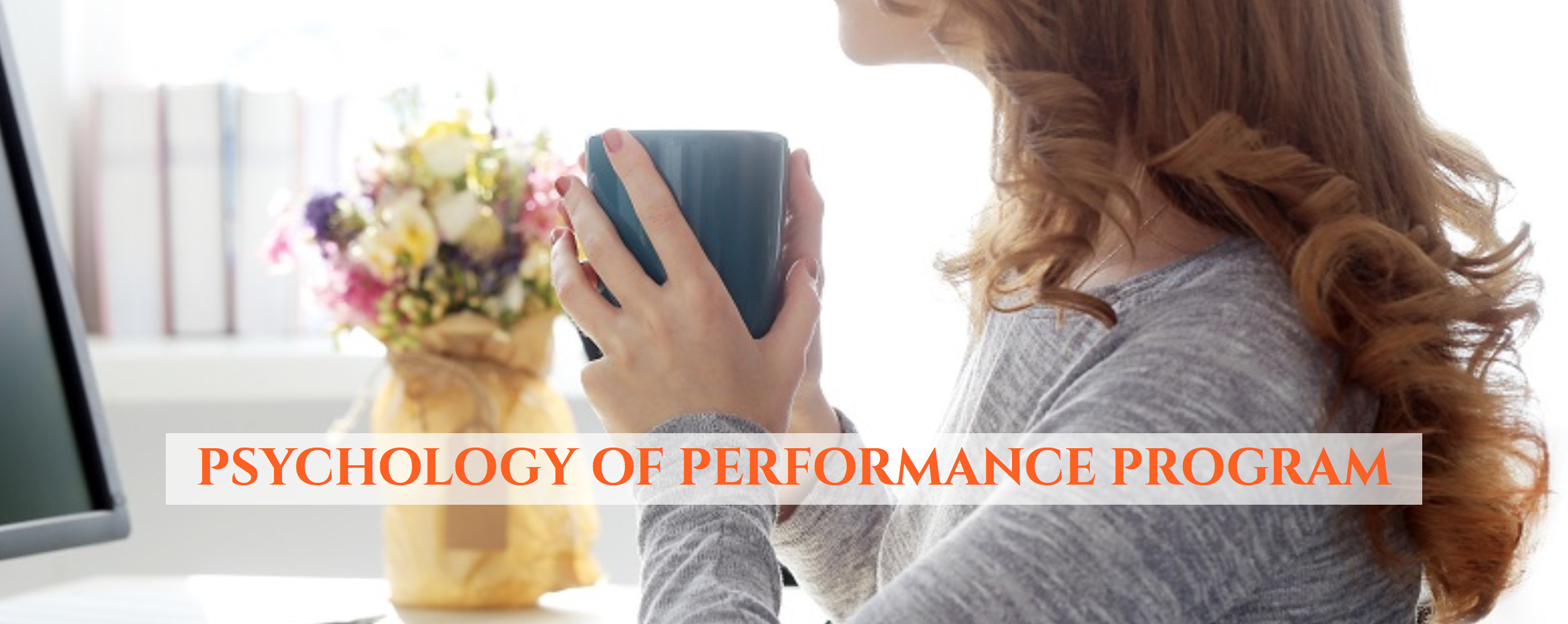 Create Success with The Psychology of Performance Program